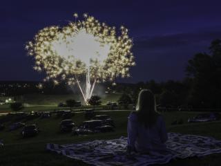 Brenda Schwartz, Fireworks, Somerset