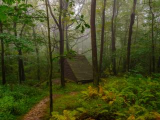 Kaczmarek_Laurel Highlands Hiking Trail_Westmoreland County