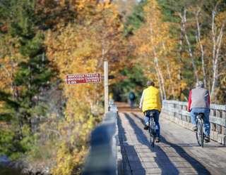 bicyclists on trail