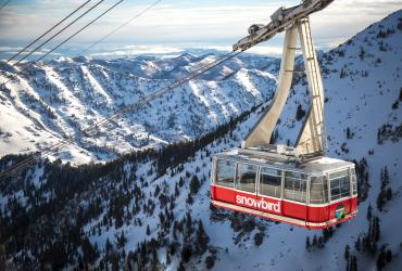 Experience Ski City's Snowbird Resort