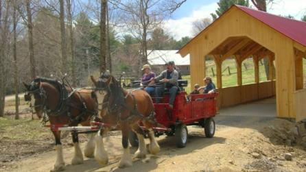 Horse cart tour at Thurman Fall Farm