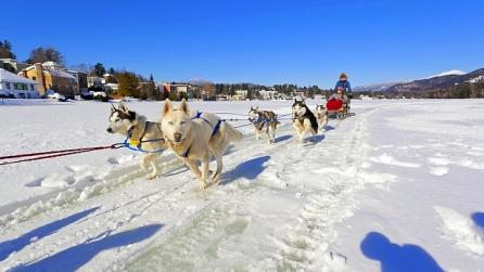 Dog Sledding on Mirror Lake