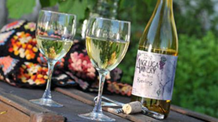 Angelica Winery