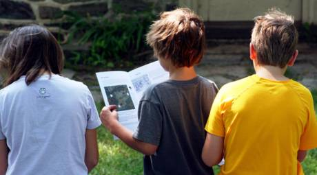 Summer Programming - Junior Ranger Program