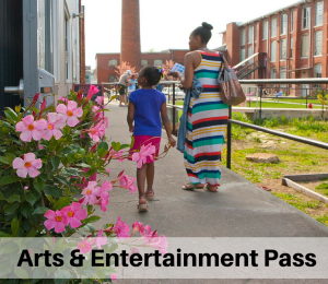 Art & Entertainment Pass