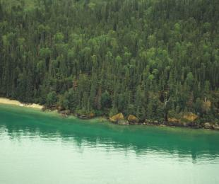 Clearwater Provincial Park