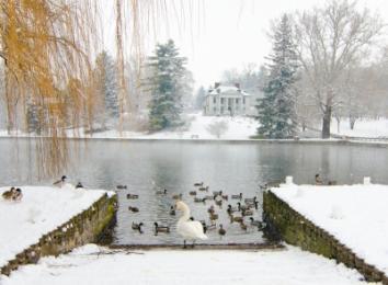Children's Lake Winter