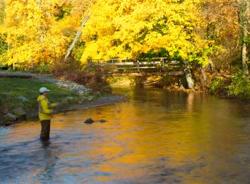 Fishing on Yellow Breeches Creek