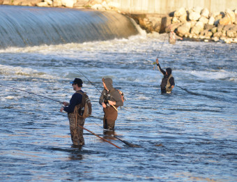 Three men fishing for salmon the Grand River