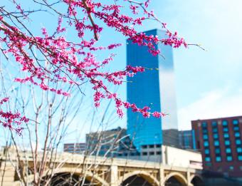 Springtime Along Grand River