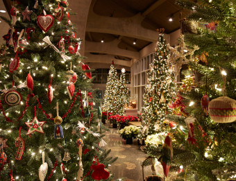 Christmas trees representing cultures around for the world on display a Frederik Meijer Gardens & Sculpture Parkt