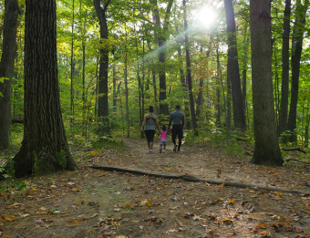 Family hiking in the forest at Aman Park.