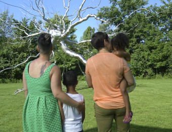 Family of four Enjoying Frederik Meijer Gardens & Sculpture Park