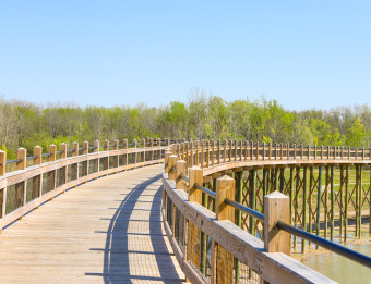 Bridge at Millennium Park in Grandville