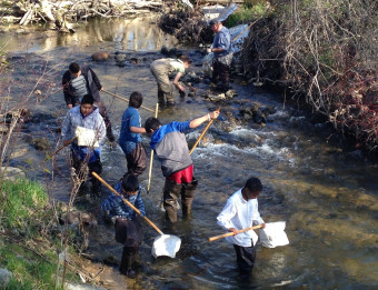"""Grand Rapids students participating in the """"Teach for the Watershed"""" program at WMEAC."""