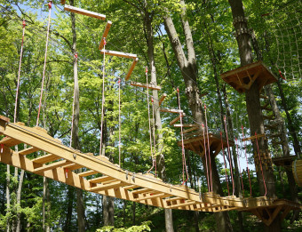 Bridge through trees at TreeRunner Adventure Park