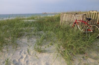 Beach Bill Russ
