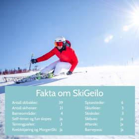 SkiGeilo