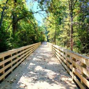 Pufferbelly Trail