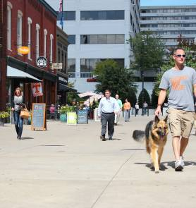Dog Friendly Hotels Knoxville Tn