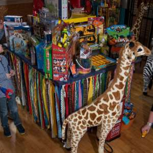 Toys-in-the-Attic-Crown-Point-Indiana-Shopping