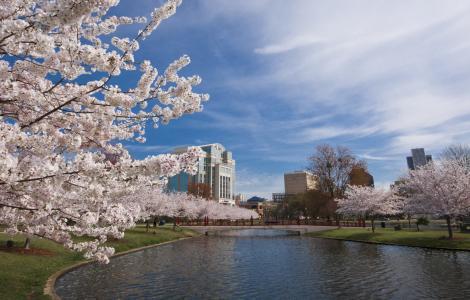 Big Spring International Park