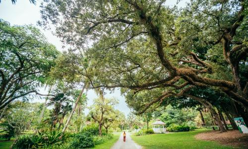 Woman walking along path at Flamingo Gardens Botanical Garden and Everglades Wildlife Sanctuary
