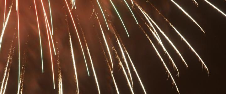 Best Backyard Fireworks food, fun and fireworks, oh my!