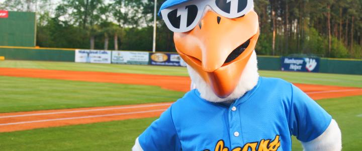 Regardless Of The Success Myrtle Beach Pelicans Ball Players On Field 2018 Already Looks Like A Win For Anyone Looking To Entertain Their Family