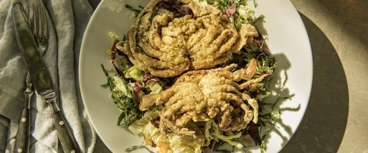 Soft Shell Crabs Are Back In Season Virginia Beach And We Couldn T Be More Stoked Blue Whose Hard Exterior Shells Have Molted