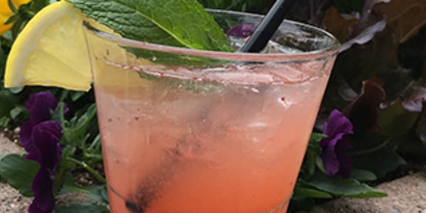 Spring Sips Article: Strawberry Patio Punch at Basset Street Brunch Club
