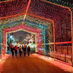 Lincoln Park Zoo ZooLights