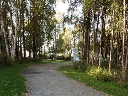 Earthquake Park path from Tony Knowles Coastal Trail