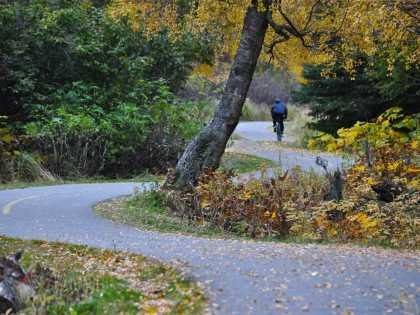 Biking in Kincaid Park on the Tony Knowles Coastal Trail
