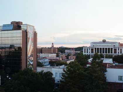 Downtown Landscape