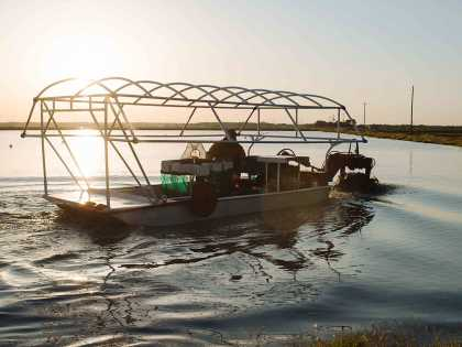 Crawfish Boat