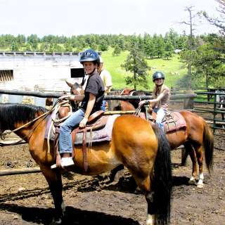horseback riding visit fort collins