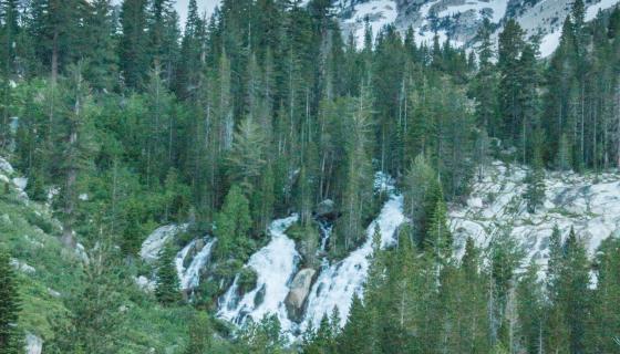 Cattle Horse Creek trail falls