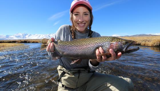 Owens River Rainbow