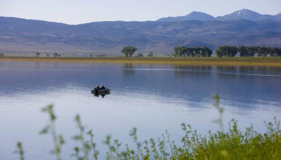 Fishing at Topaz Lake