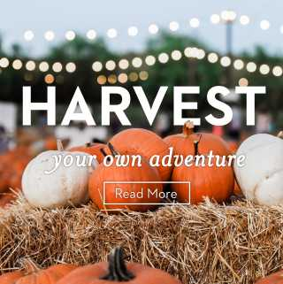Harvest Your Own Adventure