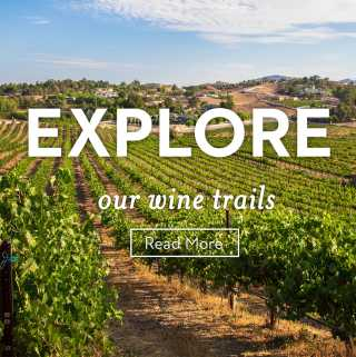Explore Temecula Wine Trails
