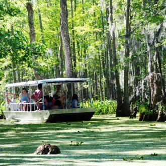 Slidell Things to Do - Honey island swamp tour