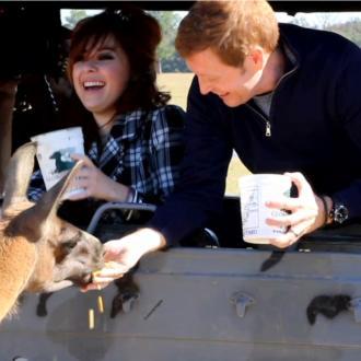 People feeding llama at Global Wildlife Center
