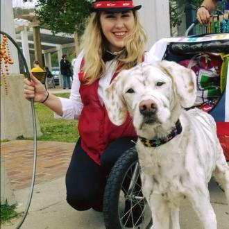 Anna Strider's dog Gabe