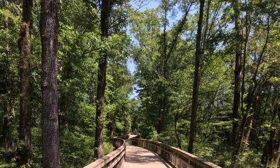 Walnut Creek Trail
