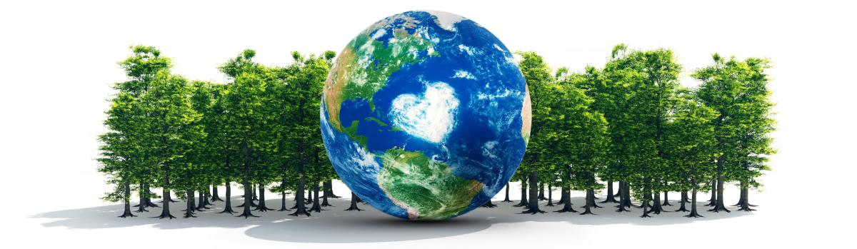 Co2 and the Globe