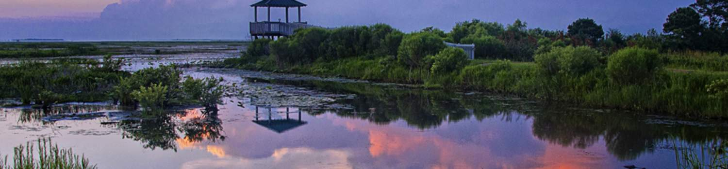 outdoor-recreation/creole-nature-trails/photography Phot