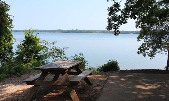 Lakeside Picnic Table