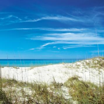 Laguna Beach Florida Map.Beaches In Panama City Beach Top Florida Beaches